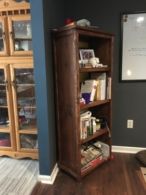 Present for My Girlfriend - A Woodworking Bookcase - Anna White Plans